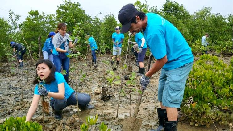 Our staff planting trees outside Ho Chi Minh city